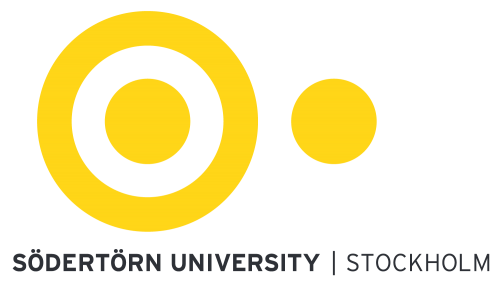 ERIAC and Department of Romani Studies at Södertörn University join forces to develop university courses